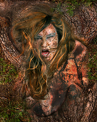 Part of a project titled Faeries Amongst Us.  A series of images depicting an unseen world of faeries, each with a particular job in the garden of earthly delights and unique personalities.  This one is Earth, the most powerful force in the garden. <br /> earthy brown intense angry woman tree bark floral dirt illustration photo portrait<br /> <br /> Photos and illustration by Charr Crail, 2011, All Rights Reserved<br /> www.charrcrail.com<br /> 916-505-1154