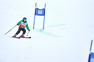 """Schladming, Austria - 2017 March 19: Barbara Mardones from Chile (109) competes in Alpine Skiing Competition while Special Olympics World Winter Games Austria 2017 on the """"Sepp-Walcher-Downhill""""<br /> (Slope 32) near the """"Tauernalm"""" in Rohrmoos on March 19, 2017 in Schladming, Austria.<br /> <br /> Mandatory credit:<br /> Photo by © Adam Nurkiewicz / Mediasport<br /> <br /> Adam Nurkiewicz declares that he has no rights to the image of people at the photographs of his authorship.<br /> <br /> Picture also available in RAW (NEF) or TIFF format on special request.<br /> <br /> Any editorial, commercial or promotional use requires written permission from the author of image.<br /> <br /> Image can be used in the press when the method of use and the signature does not hurt people on the picture."""