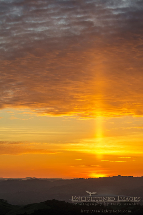 Sun pillar in sky as seen from Mount Diablo State Park, Contra Costa County, California
