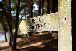 A Public Footpath Sign in Langsett wood on the North bank Langsett Reservoir situated on the Edge of the Peak District