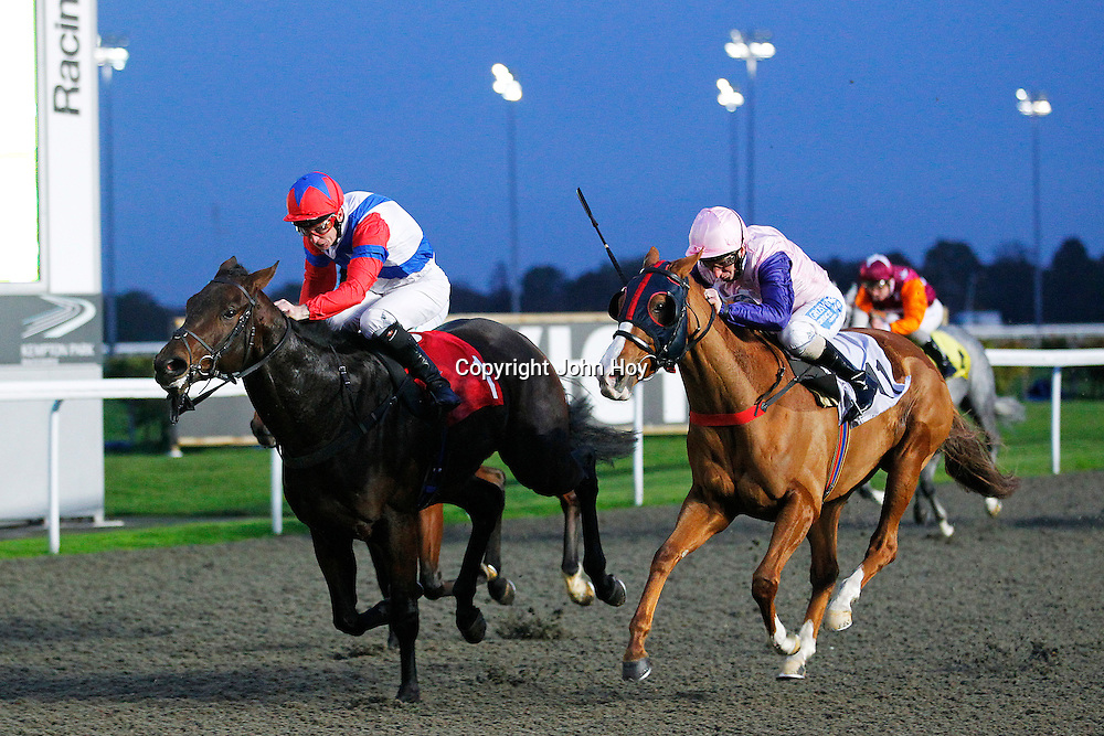 Syrenka and Martin Dwyer winning the 4.30 race