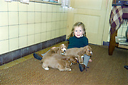 little girl posing with puppy dogs 1960s