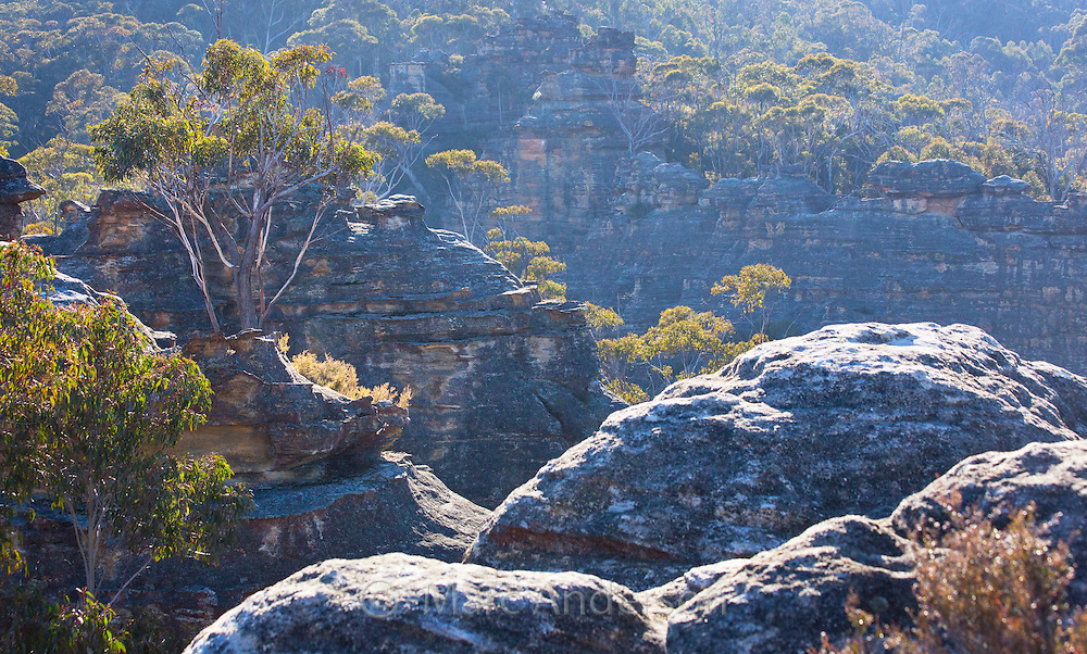 View of bushland and rugged sandstone gorges in Blue Mountains National Park, NSW, Australia