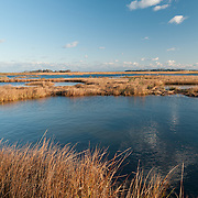 The Great Marsh is a coast wetland of 25,000 acres on the northern Massachusetts coast, It extends from Cape Ann to the mouth of the Merrimack River.