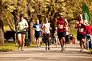 Sketchers Spring into Shape Race 1