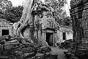 Ta Prohm temple in Siem Reap, Cambodia.