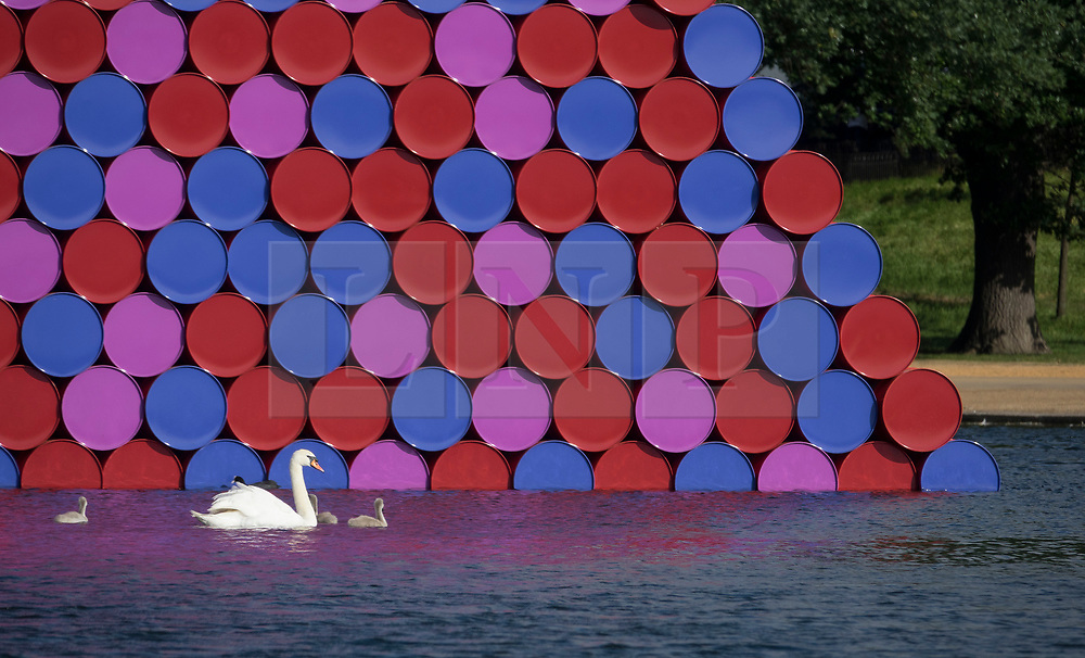 © Licensed to London News Pictures. 18/06/2018. London, UK. A swan and her cygnets pass close to artist Christo's latest work 'The Mastaba' unveiled on The Serpentine in Hyde Park. The 20m high installation, made up of 7,506 horizontally stacked barrels, is 30m wide and 40m long. Photo credit: Peter Macdiarmid/LNP