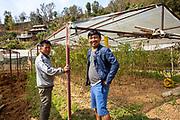 Som Kamar Megar, an ICS Alumni back in the village  with one of the village elders inside his poly tunnel that was built a previous ICS/Raleigh group in Kaudi, Nepal. (Photo by Andy Aitchison/ICS)