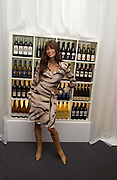 Lisa B, Party given by California Wine to celebrate wines from the Golden state,  hosted by Natasha McElhone, Emily Oppenheimer and Dr. Martin Kelly at the old Saatchi Gallery, 8 October 2003. © Copyright Photograph by Dafydd Jones 66 Stockwell Park Rd. London SW9 0DA Tel 020 7733 0108 www.dafjones.com