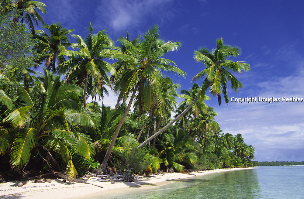 Tekopua Island, Aitutaki, Cook Islands<br />