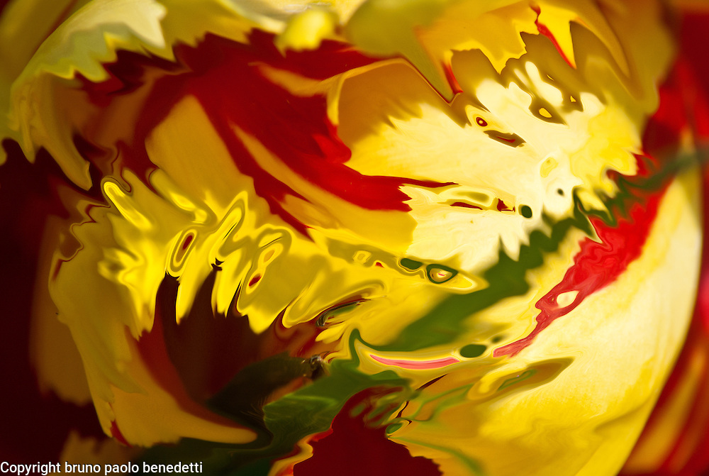 yellow red light and shade. Fluid colored shapes with red and green shades on yellow.