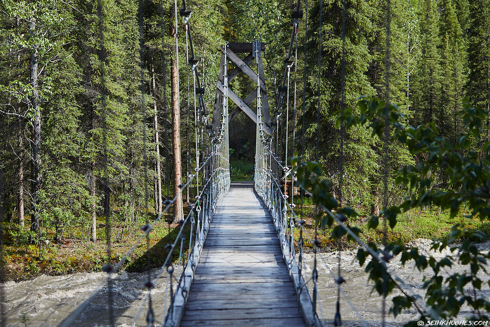 A suspension bridge spans Riley Creek on the Triple Lakes Trail in Denali National Park, Alaska.