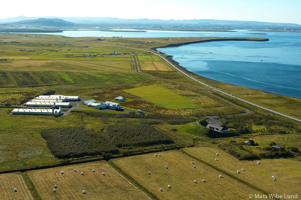 Vallá svínabú Stjörnugrís, séð til suðurs, Kjalarnes, Reykjavík / .Valla,  viewing south, Kjalarnes, Reykjavik