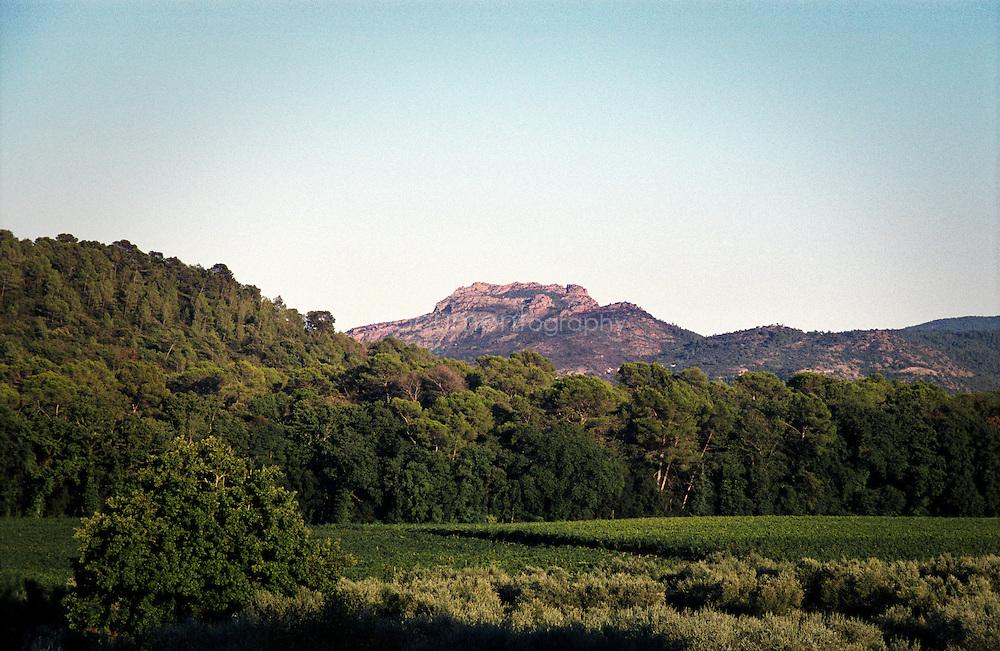 Les terres du Chateau Sainte Roseline, Les Arcs-sur-Argens, France