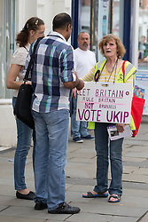 © Licensed to London News Pictures . 02/06/2014 . Newark , Nottinghamshire , UK . A UKIP campaigner in Newark , today (Monday 2nd June 2014), ahead of the by-election due to take place on Thursday (5th June 2014) . Photo credit : Joel Goodman/LNP