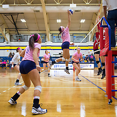 Women's Volleyball vs Wash U 2014