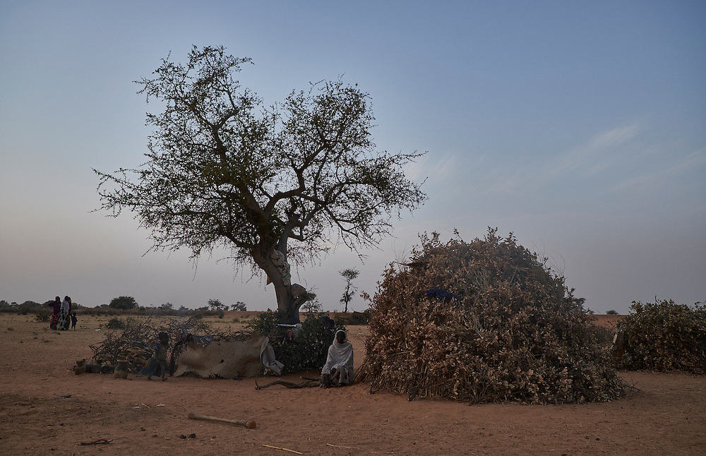 A shelter built in a camp of internally displaced people by the side of the road on the highway outside of Diffa, Niger on February 11, 2016.Caritas undertook a distribution of two blankets per family in January, 2016. Most of the displaced families are from the village of Chilori, Niger close to the border with Nigeria and fled when Boko Haram attacked killing 10 people.