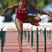 FAU Track 2002