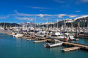 Boat harbor Seward Alaska