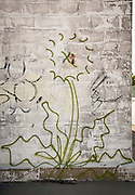graffiti in New Orleans; dandelion