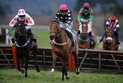 Race Winner Seymour Legend (right) ridden by Liam Tredwell jumps the last during the Evergreen Landscaping And Tree Surgery Handicap Hurdle (Class 5) (4YO plus) - Photo mandatory by-line: Harry Trump/JMP - Mobile: 07966 386802 - 09/03/15 - SPORT - Equestrian - Horse Racing - Taunton Racing - Taunton Racecourse, Somerset, England.