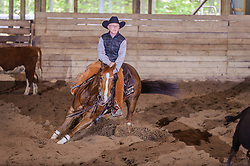 May 20, 2017 - Minshall Farm Cutting 3, held at Minshall Farms, Hillsburgh Ontario. The event was put on by the Ontario Cutting Horse Association. Riding in the 25,000 Novice Horse Class is Brian Kelly on The Reyl Slim Shady owned by Eric Bouchard.