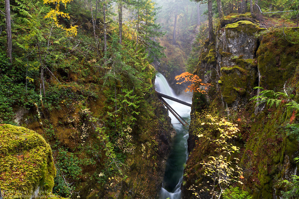 Fall color and Little Qualicum Falls at Little Qualicum Falls Provincial Park in the Nanaimo Regional District, British Columbia, Canada