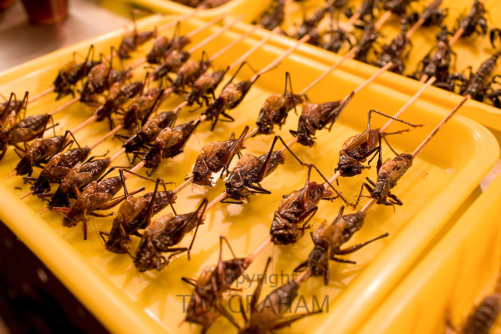 Deep fried grasshoppers for sale in the Night Market, Wangfujing Street, Beijing, China