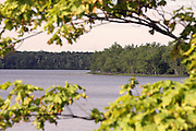 On occasion, nature provides the perfect picture frame. This image captures the southern end of South Manistique Lake, as seen from Neazor Point.