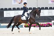 Kirsten Brouwer - Ferdeaux<br /> WK Selectie Jonge Dressuurpaarden 2017<br /> © DigiShots