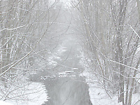 Biggest Winter Storm Ever, Arlington, Massachusetts.  Biggest storm in New England history took place in January, 2005.