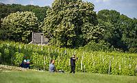 Margraten  - Rijk van Margraten. tee hole 2 tussen de druiven/wijnranken.  COPYRIGHT KOEN SUYK