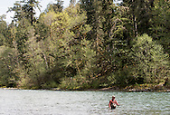 21 APR 2015: Sage Rods and Trout Unlimited life member on the Smith River and North Umpqua River in southwestern Oregon.
