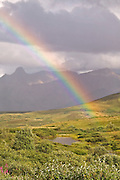 Rainbow over Alaska Range from Sable Pass, Denali National Park, Alaska. Digital original ©Robin Brandt #06_2789