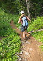 Female hiker on trail in forest.