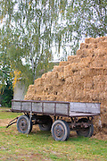 Hay bales and wagon.  Zawady   Central Poland