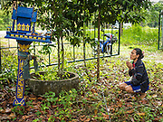 26 DECEMBER 2014 - MAE KHAO, PHUKET, THAILAND: A woman prays at a small spirit house in the forest in Mae Khao, Phuket. She survived the 2004 tsunami and came to pray at the spirit house on the tsunami anniversary. Mae Khao was used as the main morgue for people killed in the tsunami. Nearly 5400 people died on Thailand's Andaman during the 2004 Indian Ocean Tsunami that was spawned by an undersea earthquake off the Indonesian coast on Dec 26, 2004. In Thailand, many of the dead were tourists from Europe. More than 250,000 people were killed throughout the region, from Thailand to Kenya. There are memorial services across the Thai Andaman coast this weekend.    PHOTO BY JACK KURTZ