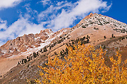 Fall color and early snow above North Lake, Inyo National Forest, Sierra Nevada Mountains, California USA