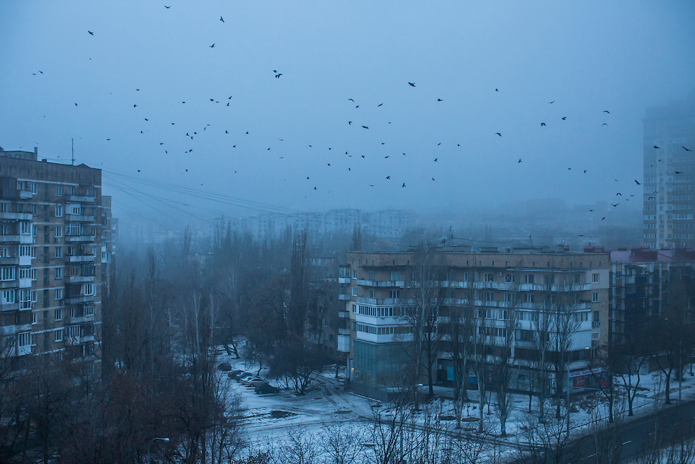 DONETSK, UKRAINE - JANUARY 23, 2015: A flock of birds over the center of the city at dawn in Donetsk, Ukraine. After the rebels finally took control of the heavily contested airport in Donetsk from the Ukrainian Army, they have promised an offensive to extend their territory further. CREDIT: Brendan Hoffman for The New York Times