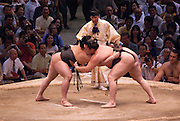 Yokuzuna ranked Mongolian Hakuho (Mönkhbatyn Davaajargal; left), and Ozeki ranked fellow-Mongolian Harumafuji (Davaanyamyn Byambadorj, right) in a bout in the controversial Nagoya summer Grand Sumo Tournament held on the 14th and second final day.