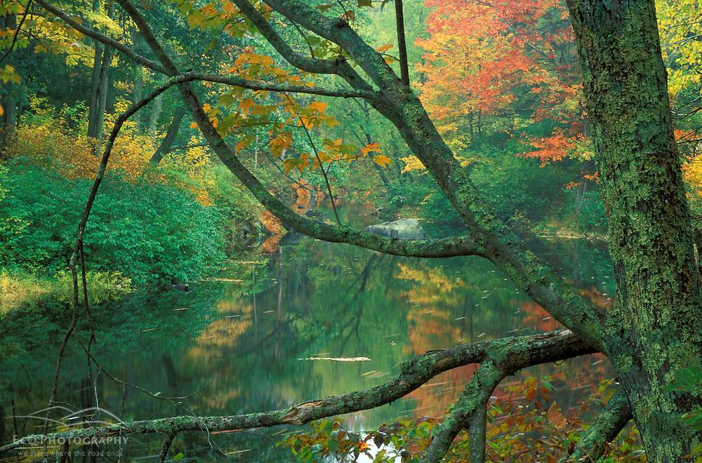 Fall on the Lamprey River below Wiswall Dam.  Durham, NH