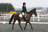 19 - 12th Mar - Dressage