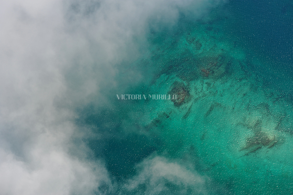 El archipiélago de las Perlas (también islas de las Perlas) son un grupo de alrededor de 39 islas y 100 islotes (muchas de ellas son pequeñas y deshabitadas) ubicadas en el corazón del golfo de Panamá, a unos 48 km de las costas del istmo de Panamá y con una superficie total de 1.165 km?, Administrativamente todo el archipiélago pertenece al distrito de Balboa, dentro de la provincia de Panamá.<br /> <br /> El nombre proviene de la abundancia de perlas que existía en la zona, durante el período de dominio español. En esta zona se halló la famosa Perla Peregrina que poseyó Felipe II y que también fuera propiedad de la actriz Elizabeth Taylor, hasta su fallecimiento en el año 2011.<br /> <br /> Por su increíble cantidad y diversidad de peces y especies marinas, este archipiélago es considerado uno de los mejores lugares de pesca deportiva en el mundo.<br /> <br /> El nombre del archipiélago debe su origen a que en la época colonial existían una gran cantidad de perlas en estas islas. <br /> <br /> Además se caracteriza por gran diversidad de peces y especies marinas. <br /> ©Alejandro Balaguer/Fundación Albatros Media.