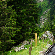Riding the world's steepest Cog railway on Mt. Pilatus - the trip down offers vistas such as the entire track disappearing from view as you crest another massive drop!