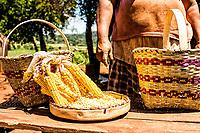 Artesanato em tribo guarani na Reserva Indígena Xapecó. Entre Rios, Santa Catarina, Brasil. / <br /> Handicraft work made by members of Guarani ethnic group in Xapeco Indian Reserve. Entre Rios, Santa Catarina, Brazil.