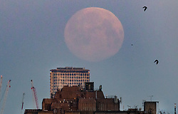 © Licensed to London News Pictures. 09/03/2020. London, UK. The near full supermoon sets over London. Also know as the Worm Moon at this time of year - it will be at it's fullest as it rises later today. A supermoon is a full or new moon that comes closet to the Earth in its elliptical orbit—resulting in a slightly larger than usual apparent size when viewed from Earth. Photo credit: Peter Macdiarmid/LNP