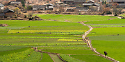 Rice fields and village, Yangtze River Gorge, Xishuangbanna Dai Autonomous Prefecture, China