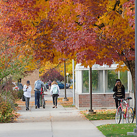 Campus scenes, fall, students. John Kelly photo