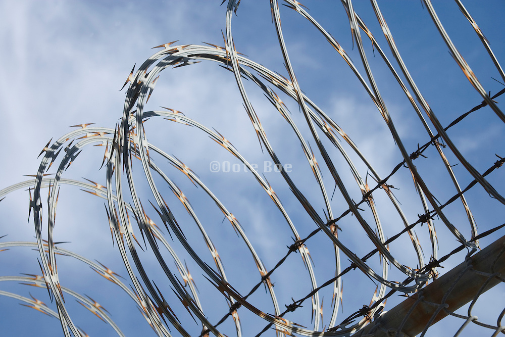 razor wire rimmed fencing with blue sky background