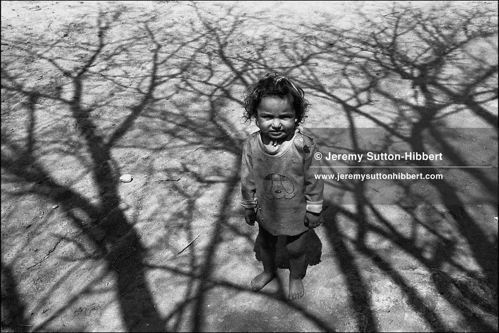 A young Kalderash Roma child stands amongst the shadows of a tree in the village of Sintesti, near Bucharest.